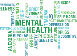Understanding Mental Health Issues