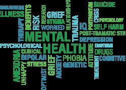 Understanding Mental Health Issues